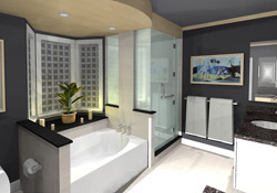 Swinging Steam Shower Door